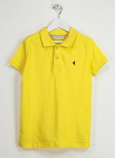 Asymmetry Polo Yaka Tişört Sarı